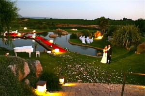 свадьба на винодельне фото